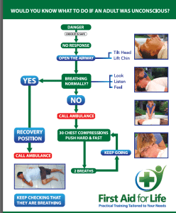 adult resus flow chart