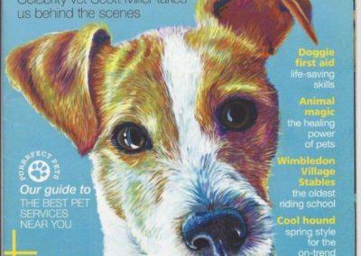 Essential Surrey & SW London: Doggie First Aid