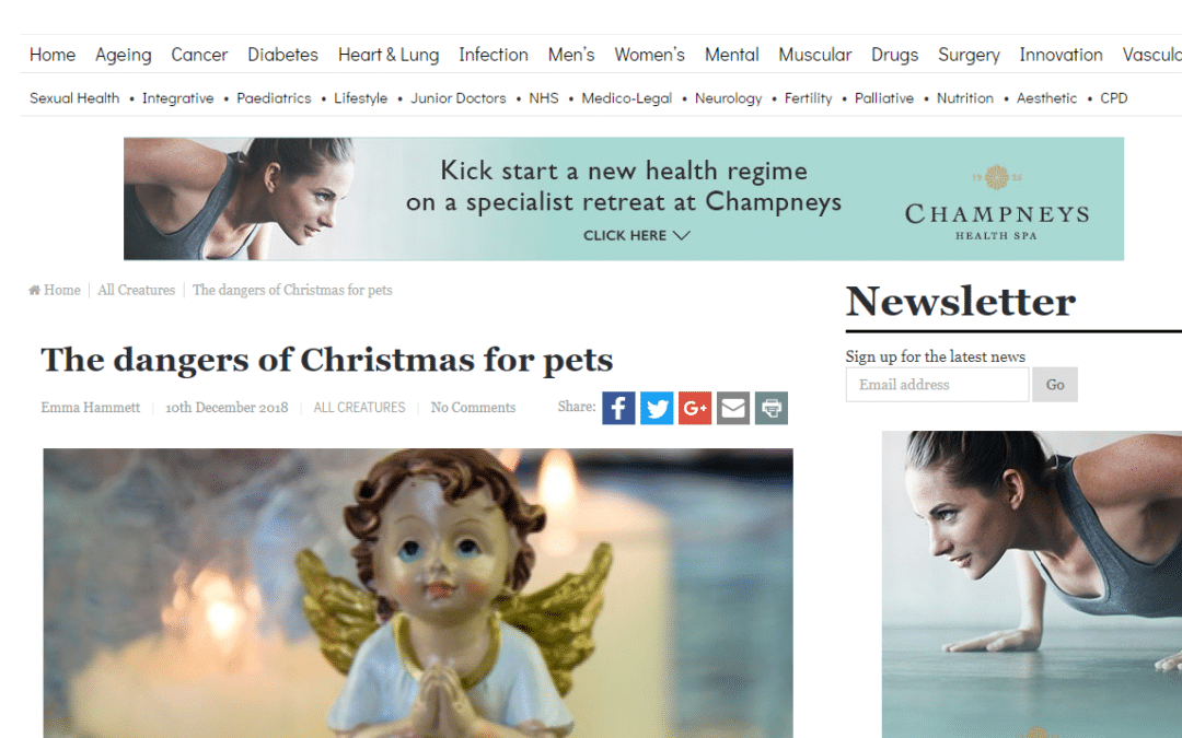 Hippocratic Post – Dangers of Christmas for Pets