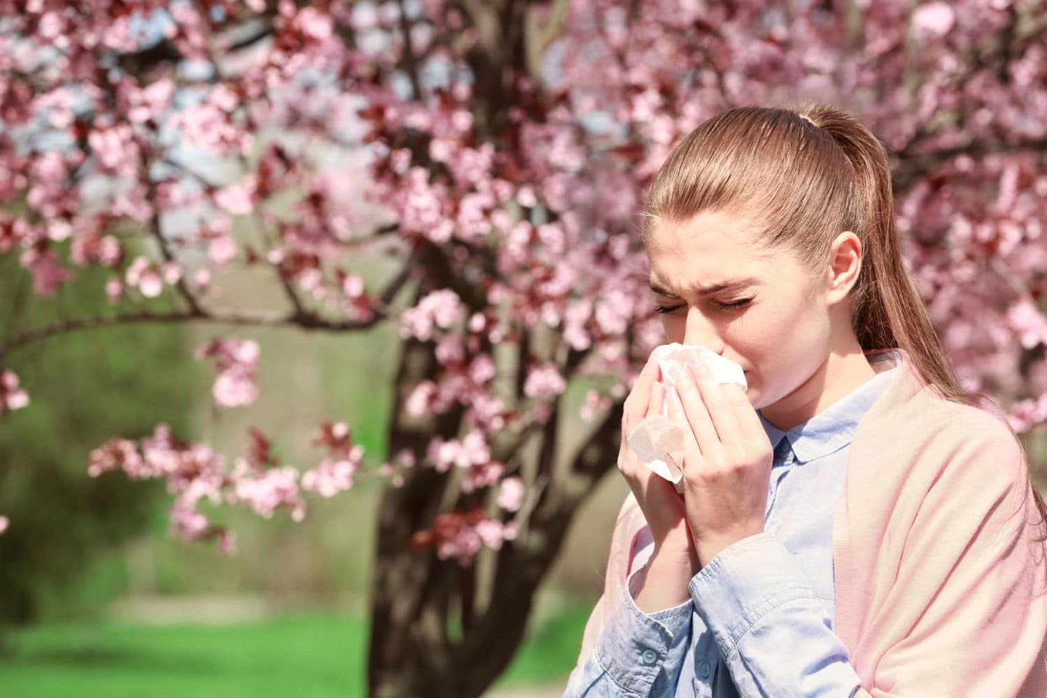 Great Tips That Can Help You Alleviate Your Asthma