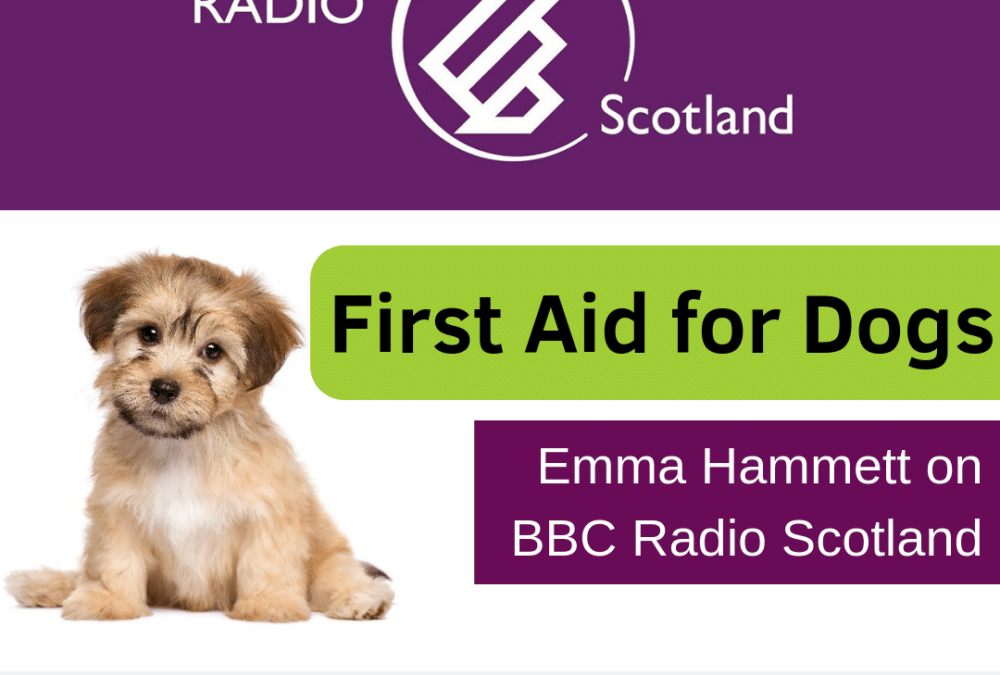 BBC Radio Scotland – First Aid for Dogs