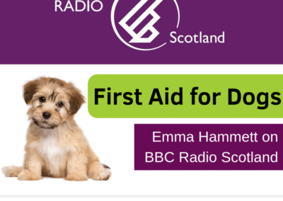 BBC Radio Scotland – First Aid for Dogs [21 June 2019]